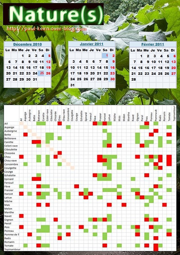 Mes elf ebulations calendrier des fruits et l gumes - Association de legumes au potager ...