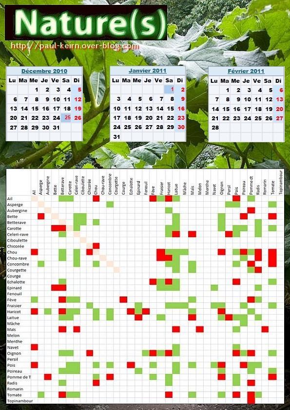 Mes elf ebulations calendrier des fruits et l gumes viandes et laitages de f vrier 2011 - Association de legumes au potager ...